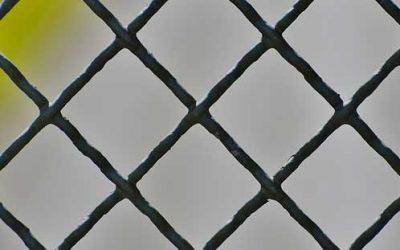 Le migliori recinzioni per il tuo giardino