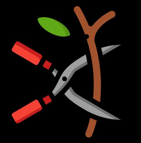 Attrezzi e kit per giardinaggio indispensabili